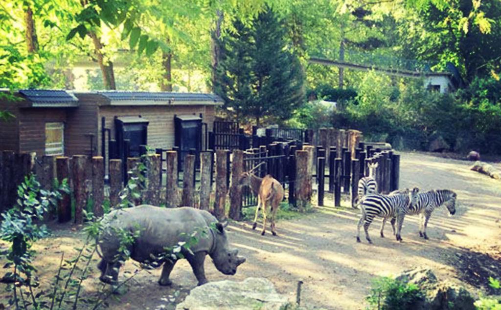 Zoo de la Citadelle de Lille